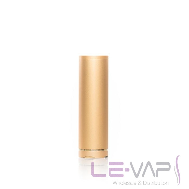 PETRI LITE (24MM)- Gold